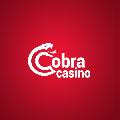 Cobra Casino Opinie  Review